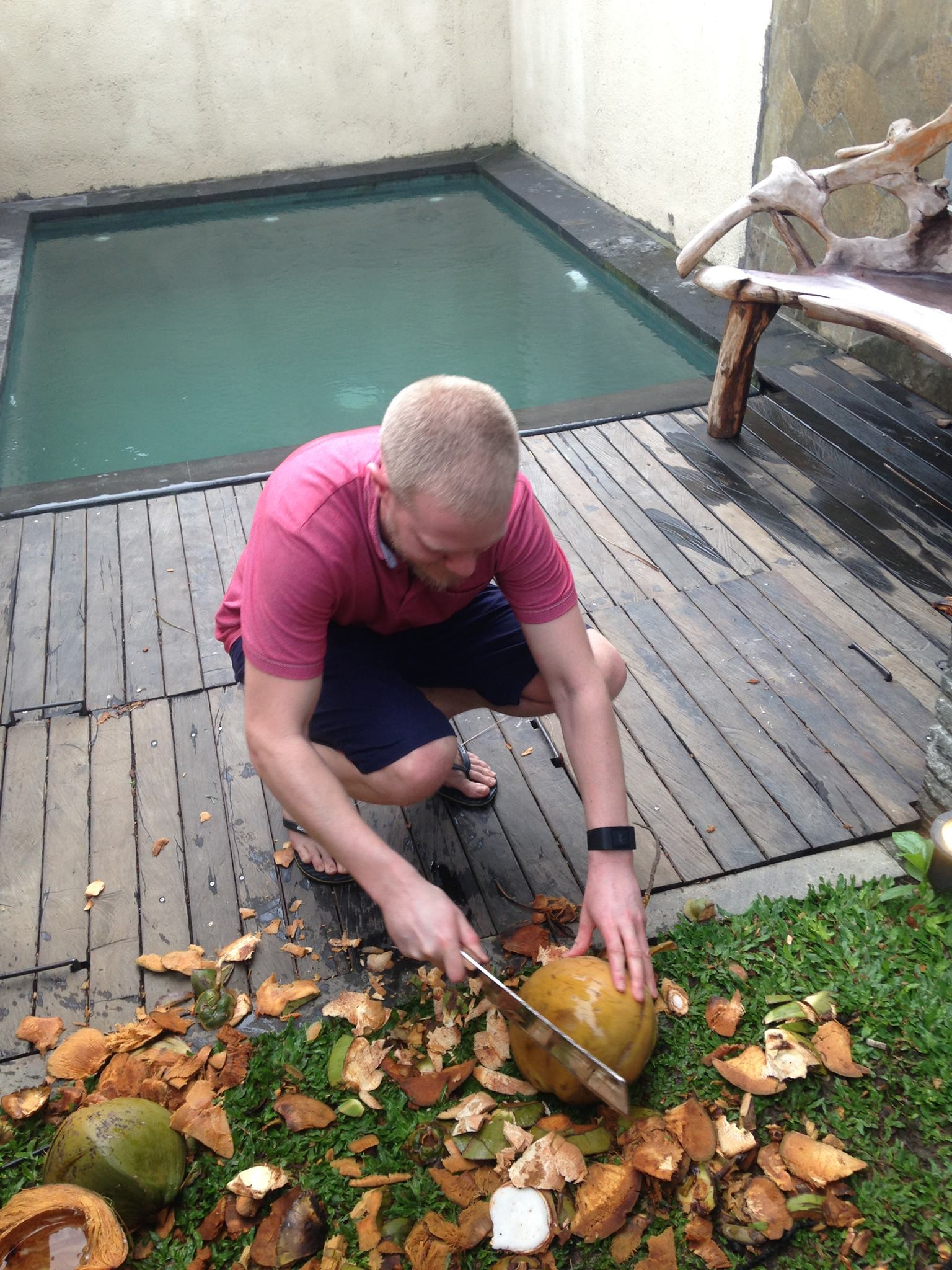 Bali Coconuts